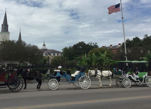 Horse & Carriage in front of Jackson Square