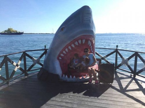Jaws at a beachside restaurant