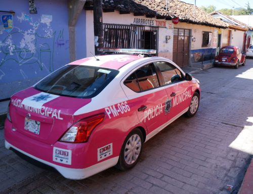 Pink Police Car