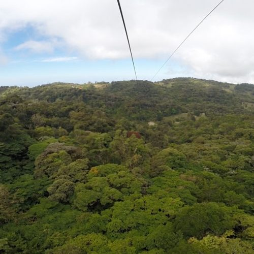 Cloud Forest Zip Line