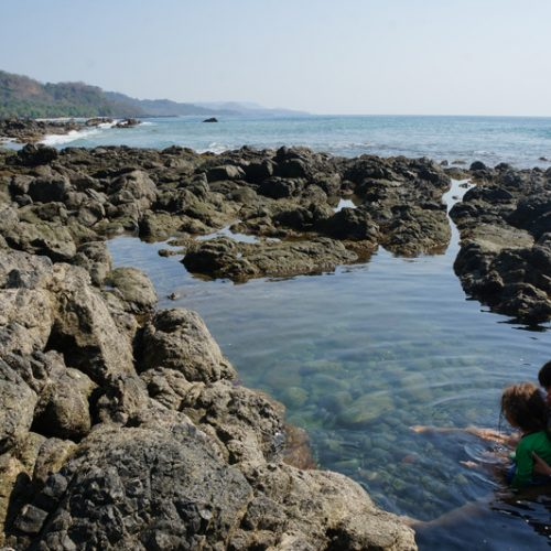 Rock pools by the hotel