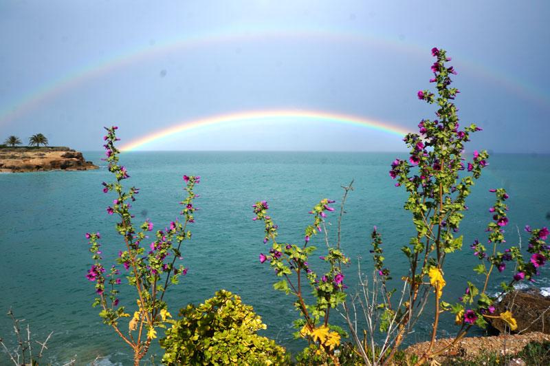 vinaors-double-rainbow